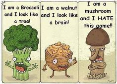 i am a broccoli and i look like a tree! i am a walnut and i look like a brain! i am a mushroom and i hate this game!! | RAW FOR BEAUTY
