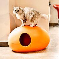 Cat litter box, Color orange, http://www.pet-interiors.de/de/katzentoilette-poopoopeedo_artnr300000