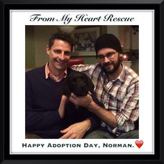 #Please #Share #FromMyHeartRescue #RescueWithoutBorders #SavingOneDogAtaTime ~ #Happy #Adoption #Day #Norman  Thank you for your support.❤️ *Info, Foster, Adoption, PayPal & e-transfer & PayPal: frommyheartrescue@hotmail.com *Our Vets: Brock St. Animal Hospital/FMHR 905-430-2644 *Fundraising & Volunteering: FMHRfundraising@hotmail.com *Gift Basket Donations: FMHRgifts@hotmail.com   *www.frommyheartrescue.com *www.petfinder.com/shelters/ON441.html *www.facebook.com/frommyheartrescue…