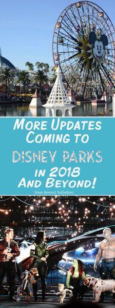Disney World Tips |