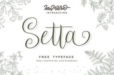 Free font for all your design project, Setta Script Free Typeface. This font is free for personal & commercial use with high premium quality design Free Typeface, Script Typeface, Calligraphy Fonts, Modern Calligraphy, Branding, Best Free Fonts, Font Free, Police, Handwriting Fonts