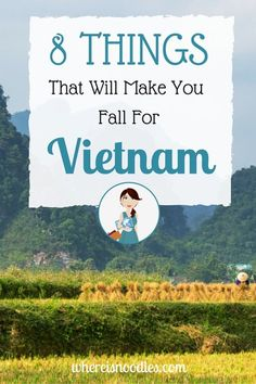 8 Things That Will Make You Fall For Vietnam - where is noodles?