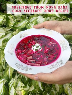 Summer cold beet soup