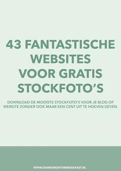 Ben je op zoek naar gratis stockfoto's voor je blog of website? Ontdek hier de mooiste websites waar je gratis stockfoto's kunt downloaden.