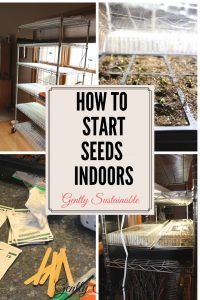 Starting seeds indoors isn't difficult, and it helps you to get a jump start on the season!