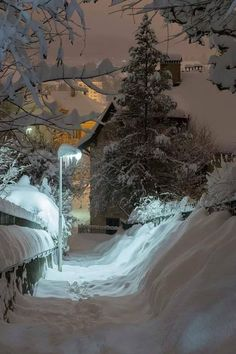 It's a beautiful world Winter Szenen, I Love Winter, Winter Magic, Winter Night, Baby Winter, Winter Christmas, Beautiful World, Beautiful Places, I Love Snow