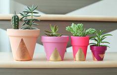 It's DIY Time {Next Level Succulent Pots!} «