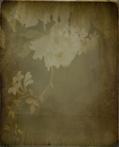 (Photo Textures with a creative commons license) Drape by 'Playingwithbrushes', via Flickr