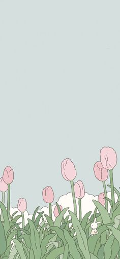 Pin by <3 on wallpapers in 2021 | Cartoon wallpaper, Aesthetic iphone wallpaper, Anime wall… in 2021 | Pink wallpaper anime, Iphone wallpaper kawaii, Cute simple wallpapers