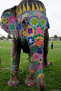Hippie elephant :) Sorry guys I didn't realize everything was going to facebook as I pinned it. However this I have to send. Erika, Dave, Peggy, Linda ( it wont let me tag) is this cool or what? :)