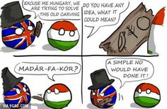 Hungarian language in action.and I'm Hungarian🤣🤣🤣 it's bird tree and circle Funny Video Memes, Funny Jokes, Hilarious, Memes Humor, Best Funny Pictures, Funny Images, Satw Comic, You Funny, Funny Things