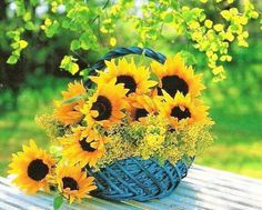 looooove this pin! and it is getting harder and harder to find New sunflower pins! Happy Flowers, My Flower, Beautiful Flowers, Sun Flowers, Sunflowers And Daisies, Sunflower Pictures, Sunflower Garden, Mellow Yellow, Floral Arrangements