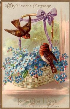 Robins in Basket of Forget-Me-Nots Raphael Tuck & Sons Floral Missives Postcard