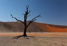 Namibie Le Namib s'étend sur 1 500 km de long et sur 80 à 150 km de large. Situé au SO de la Namibie, c' est un désert de type côtier, les oiseaux de mer et les otaries en ont fait leur terrain de jeux. Le Namib possède les plus hautes dunes du monde, celles de Sossusvlei peuvent atteindre 300 m de haut. Le Parc national Namib-Naukluft avec ses multiples paysages insolites, du désert caillouteux à la savane, des montagnes aux couleurs dégradées à la mer de dunes rouges