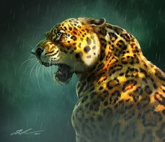 Animal sketches 2015 on Behance