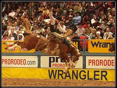 PBR and Rodeo Luxury Suites and Bull Riding VIP Seating