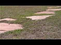 Home Landscaping Tips : How to Place Stepping Stones - YouTube