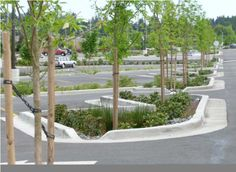 "This ""low impact"" solution for storm water management in parking lots is effective in directing storm water to the plant material but can become very costly with excessive concrete curbs and curb cuts. Photo from Light Imprint Handbook by DPZ Charlotte."