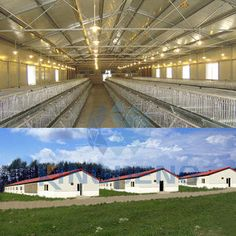 Commercial Chicken House commercial poultry house pictures | aerial shot of a modern