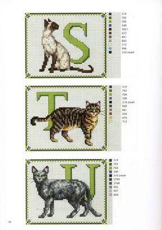 ABC GATOS (s, t, u)