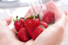 Home Food Safety - Common Food Safety Mistakes with potential for food poisoning. Croquembouche, Clean Eating Recipes, Healthy Eating, Food Poisoning, Home Food, Diet Drinks, Chocolate Covered Strawberries, Food Safety, Natural Health