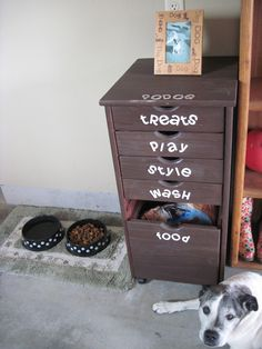 Cute way to organize the pups stuff