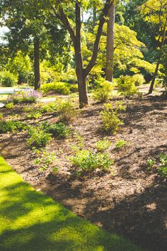 Plant bed landscaping