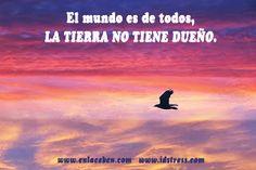 #iDStress gestión del #estrés #emociones #CentroEnlace idstress.com enlacebcn.com #analombard cuerpo/conciencia plena/salud emocional