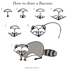 inside looking out: how to draw a racoon ! Forest Animals, Woodland Animals, Woodland Art, Woodland Critters, Raccoon Drawing, Drawing Birds, North American Animals, Forest Mural, Directed Drawing
