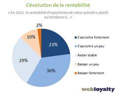 evolution de la rentabilité des sites marchands en 2013