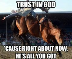 He is all ya got Rodeo Quotes, Equestrian Quotes, Cowboy Quotes, Equestrian Problems, Horse Sayings, Funny Horse Memes, Funny Horses, Funny Memes, Bull Riding Quotes