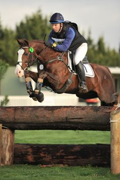 Cross Country - Irish Sport Horse stallion Icarus Frosty