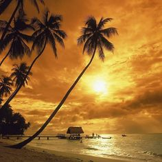 #Pigeon Point sunset, #Tobago #travel