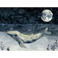 """Oopsy Daisy Watercolor Whale at Night by Shannon Newlin Canvas Art Size: 14"""" H x 18"""" W x 1.5"""" D"""
