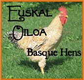The fascinating history of the amazing Euskal Oila (Basque Hens)