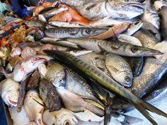 Un po di tutto e tutto di un po: Alcune specie di pesci di mare