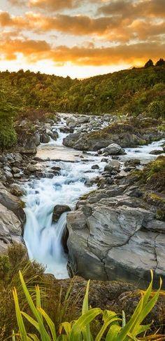 The Whakapapanui River near Whakapapa, Tongariro National Park, NZ