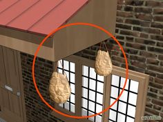 Keep wasps away! Fill a crumpled brown paper bag with plactic grocery bags and hang it. Wasps are territorial and thinking that it is a wasp/hornet nest, will avoid.
