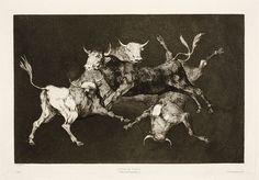 Francisco de Goya - Disparate de Toritos (nº 19), 1877