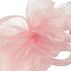 Simply Sheer Asiana Ribbon | Offray Ribbon