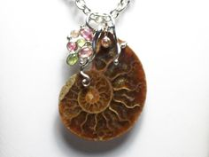 Ammonite Rare Fossil in Jewelry Quality and Tourmaline .925 Silver Pendant - inspiration nautic jewelry