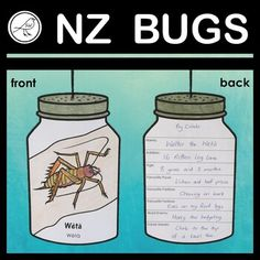 New Zealand Native Bugs - writing and craft activity School Resources, Classroom Resources, Velvet Worm, Classroom Environment, Cool Writing, Favorite Pastime, Activity Sheets, Primary School, Craft Activities