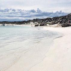 Salmon Bay. Rottnest Island. WA  #salmonbay #rottnest #rottnestisland #perth #wa #westernaustralia #thisisWA #australia #exploreaustralia by bene.hernandez http://ift.tt/1L5GqLp
