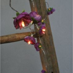 Magenta Purple Rambling Rose Fairy Lights String by PamelaAngus