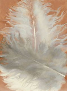 Feathers, White and Grey  O'Keeffe, Georgia  1942  oil on canvas  16 x 12 in
