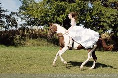 trash-the-dress-horse
