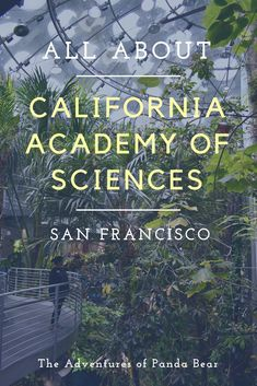 California Academy of Sciences Natural History Museum | Osher Rainforest, Butterflies, Macaws, Penguins, Steinhart Aquarium, Living Roof, Holiday Ice Skating Rink, Swamp, Morrison Planetarium Show, Pterosaurs Age of the Dinosaurs, Foucault's Pendulum, Gems & Minerals Unearthed, Holiday Exhibits and Activities, Golden Gate Park, San Francisco, California