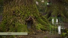 """My making of the Forest , https://vimeo.com/50100840 , a major project for MA digital Effects in Bournemouth, made together with Derek Doritis   This is the breakdown of the compositing part.   - Compositing - Dummy geo -  Clean up - Keying - Camera projection -    Check out the 3d part as well https://vimeo.com/52113061   Software used ‐ Nuke  ‐ Houdini ‐ Photoshop ‐ Premiere pro - Shooting was done with the Sony ex3 with pro35 adaptor  Song """"Sleep"""" by Vodka Juniors"""