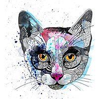 Cats Photographic Print @scottiebizzno3 #IHeartRB