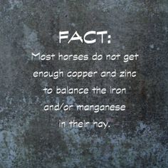 That is one of the reasons we have added copper and zinc to our Daily Balanced Supplement for horses on a hay diet. www.lechevalaunaturel.com